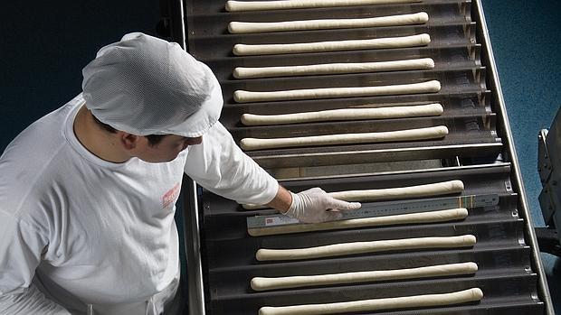 Berlys Corporación inaugura dos nuevas líneas de producción